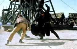 Le Masque de Zorro : image 16705