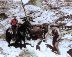 Six chevaux dans la plaine : image 62185