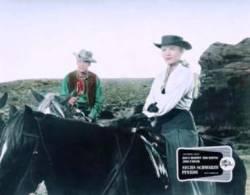 Six chevaux dans la plaine : image 62189