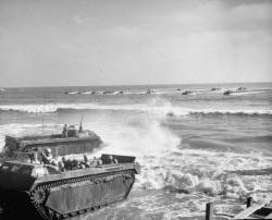 Iwo Jima : image 152797