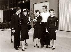 Francis dans la marine : image 138620