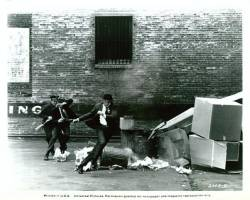 Police sur la ville : image 157650